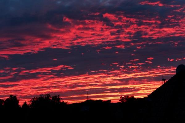 2020-05-22_sunset